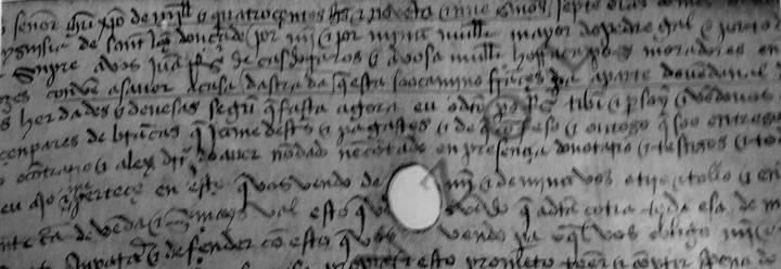 1499-camino-frances-peregrinos-portugal-ribeiro