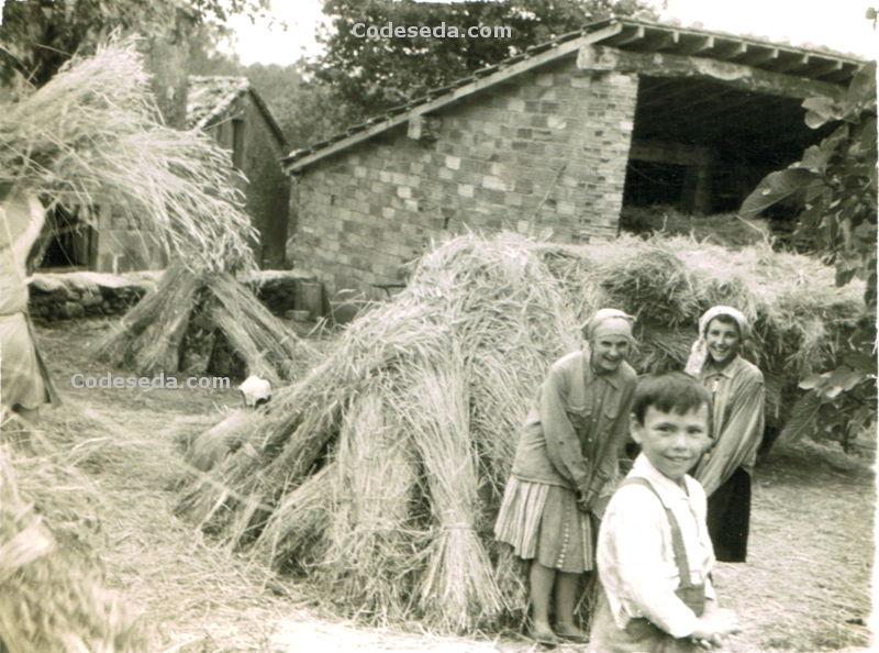 1963-04mp_14_nenos