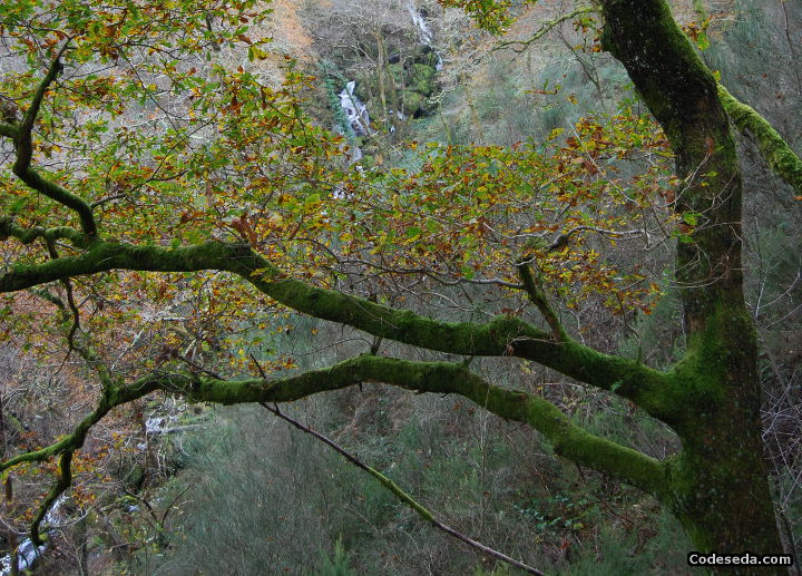 fevenza-cataratas-galicia-visitar-a-estrada-turismo-rural