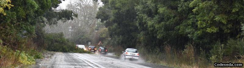 galicia-a-estrada-temporal-caida-arboles