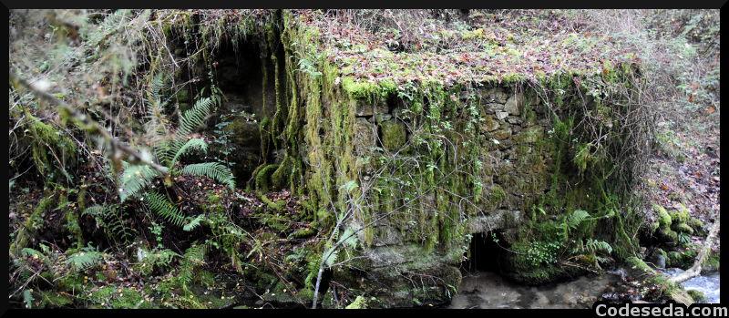Muiño en As Quintas, un poco más arriba que el de A Fervenza. Es diferente al resto por tener la presa de agua a gran altura.