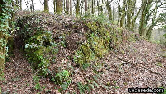 murallas-defensivas-castro-celta-a-estrada-foso