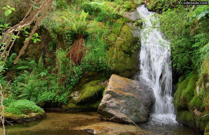 salto-catarata-fervenza-galicia-rio-agua