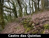turismo-guia-castro-das-quintas